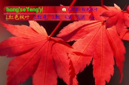 枫叶折纸花步骤图解
