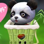 萌宠·熊猫宝宝