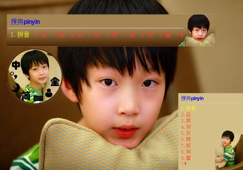 tf家族宇寻(棕色)