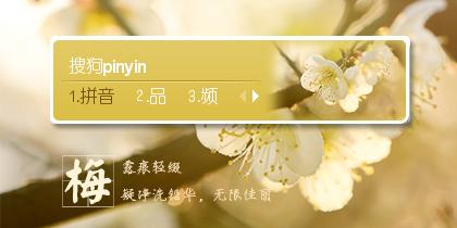 【星之】有一种花叫梅花