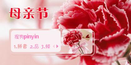 康乃馨·母亲节
